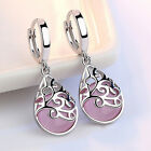 Stylish Female Silver Tone Moonlight Opal Tears Totem Drop Earrings Gift 8C