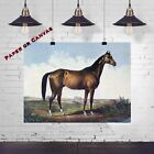 The Celebrated Horse Lexington by Currier & Ives 1855 Reproduction Art Print