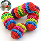 Colorful TPR Rubber Pet Dog Puppy Dental Teething Teeth Gum Chewing Toy Healthy