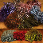 Hareline Strung Guinea Feathers - All Colors