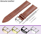 For MEISTER SINGER Brown Genuine Leather Watch Strap Band Buckle Clasp