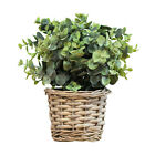 Artificial Indoor House Plant In Wicker Flower Pot Basket Home Office Decoration
