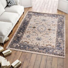Area Rug Beige Oriental Design Traditional Carpet Living Room Small Extra Large