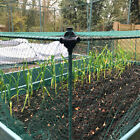Plant Protection Fruit and Veg Cage with Bird Net - Available in 5 Sizes