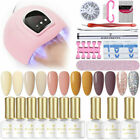 20Pcs/Set BORN PRETTY UV Gel Nail Polish 54W Nail Dryer LED Lamp Brush File Kit