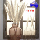 15pcs Natural Dried Pampas Grass Reed Home Wedding Flower Bunch Diy Decoration