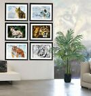 Tiger Lynx White Tiger Snow Leopard Lion Art Paint/Print Set of 6 or single