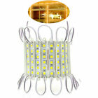 10~250FT Warm Super bright IP65 Waterproof 5054 SMD 6LED Module Light Lamp Strip