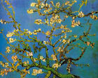 "Vincent Van Gogh- Blossoming Almond Tree - 20""x26""   on Canvas"
