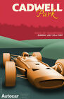"Cadwell Park- Race of Champions- Racing Poster Recreation 24""x36""  Canvas Poster"
