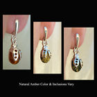 BALTIC HONEY or GREEN AMBER & STERLING SILVER LADYBUG POST BACK EARRINGS