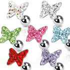 Surgical Steel Tragus / Cartilage / Helix Bar with Multi Paved Butterfly Top