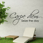CARPE DIEM seize wall quote the day stickers bedroom vinyl transfer sticker art