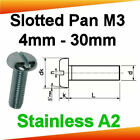 M3 Stainless A2 Slotted Pan Head Machine Screws