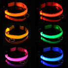 LED Dog Pet Night Safety Collar Flashing Light Up Circle Pandent Tags Keychain