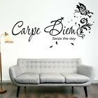 CARPE DIEM SEIZE THE DAY wall art quotes decoration sticker bedroom decal vinyl