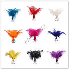 Free shipping10-100pcs/8-10inch high quality natural ostrich feather Wedding hot