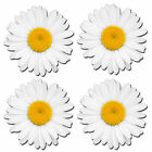 4 x Static Cling Stickers - Flowers Daisy Inside Car Window Decals #0180
