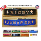 Custom Puppy Collars - Personalized Dog Collars and Leashes for Small Dogs - USA