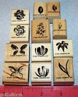 Stampin Up Watercolor Minis Stamp Set 2 Step Stampin Flowers Floral U-Pick a Set