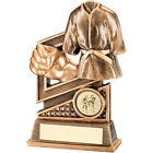 Martial Arts Award  - Free Engraving Martial Arts Trophy karate Award