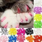 Cat Dog 20pcs Nail Control Claw Pet Soft Paws Caps OffGlue Adhesive  Cats New