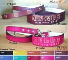 Custom made Dog Collars and Leashes - Cool Dog Collars for Big Dogs XXL - USA