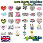 BEST QUALITY Floating Charm For Living Memory Locket LOVE HEARTS WEDDING FAVOURS
