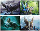 Anne Stokes Mystical Collection Wall Plaque/Canvas Print ~ Unicorn ~ Mermaid ~