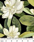 Magnolia Tree Fabric Black Background South Southern Charm 100% Cotton NEW