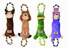 New KONG Tugger Knots S/M Dog Puppy Squeaky Chew Tug Toy Assorted Characters