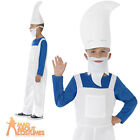 Child Smurf Costume Gnome Girls Boys Book Week Day Fancy Dress Outfit Kids