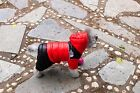 Pet Dog Winter Clothes Thickening Warm Puppy Clothing Dog Jumpsuit Down Coat