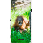 Orangutan Monkey Primates Animal Hard Case For Sony Xperia T3