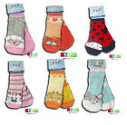 New Baby Girl Cuddly Toys 60% Cotton Socks 12-18 Months, 18-24Months 2-3 years