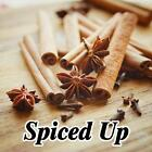 Crystal Potpourri 10 oz ***Spiced Up! Collection***  Eagle Rock Candle Co.