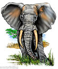 Super Cool Elephant Walking on the Great Plains of Africa T-Shirt, wl60011