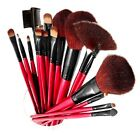 SHANY Professional 12 Piece Natural Goat and Badger Cosmetic