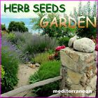 Herb Seeds Mediterranean Garden 33 Varieties  Aromatic Medicinal Spices Plants