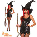 Adult Witch Tattered Sequin Dress Halloween Horror Sexy Ladies Fancy Dress New