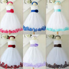 Gorgeous White red fuchsia pink blush tulle rose petals flower girl party dress