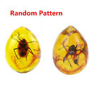 Resin Amber Butterfly Scorpion Crabs Ants Spider Insect Stone Pendant NecklaceAmber - 10191