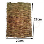 Hamster Grass Chew Mat Breaker Small Animal Toy Rabbit Rat Guinea Pig Chinchilla