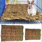 Kyпить Hamster Grass Chew Mat Breaker Small Animal Toy Rabbit Rat Guinea Pig Chinchilla на еВаy.соm