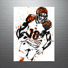 AJ Green Cincinnati Bengals Poster FREE US SHIPPING $15.0 USD on eBay