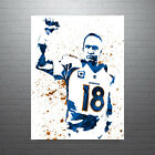 Peyton Manning Denver Broncos FREE US SHIPPING $15.0 USD on eBay