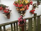 6 plant pot holders.Hang plants on a wall,fence,shed,pallet.container gardening.