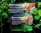 Nemaslug slug killer nemasys single and programmes natural nematodes all plants