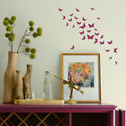 Butterfly Wall Sticker Bargain Transfer Butterflies Graphic Decal Decor Stencils