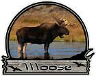 MOOSE HUNTING color vinyl bumper decals stickers (194)